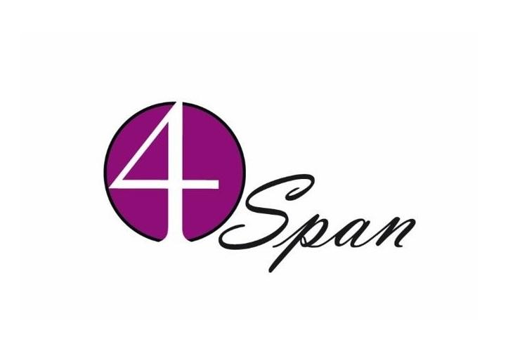 Het 4 Span - Paint